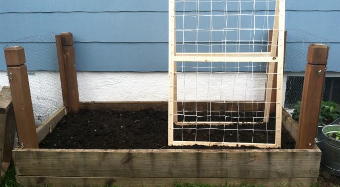 small garden day 1