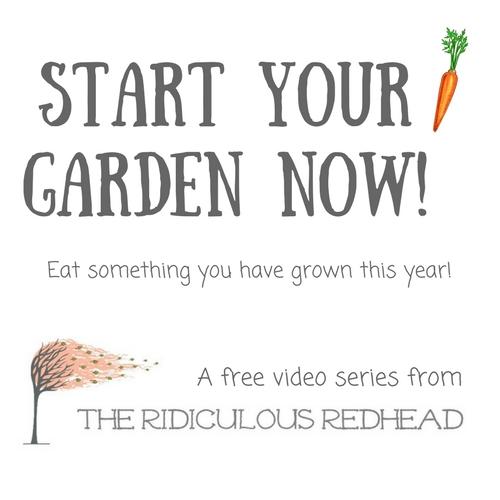 Start Your Garden Now